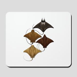 RAYS Mousepad
