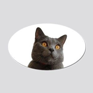chartreux Wall Decal