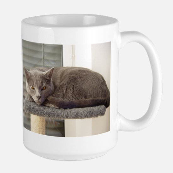chartreux laying Mugs