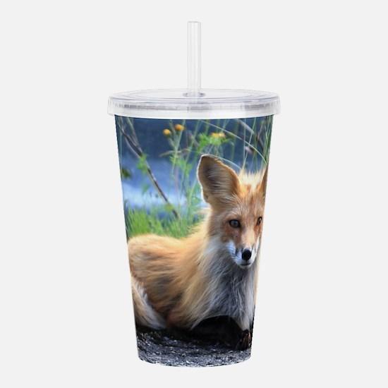Fox Acrylic Double-wall Tumbler