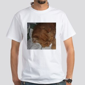 exotic shorthair orange tabby T-Shirt