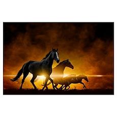 Wild Black Horses Wall Art Poster