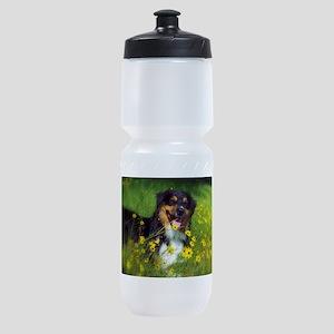 SURF Australian Shepherd Sports Bottle