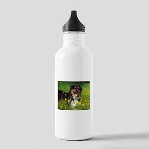SURF Australian Shepherd Water Bottle
