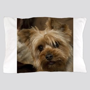 Yorkie Puppy Pillow Case