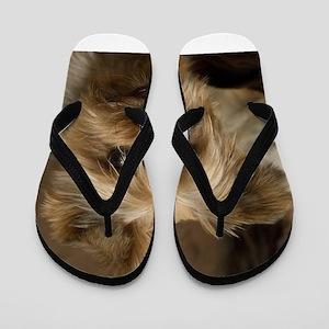 Yorkie Puppy Flip Flops