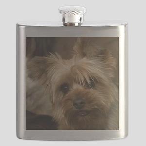 Yorkie Puppy Flask