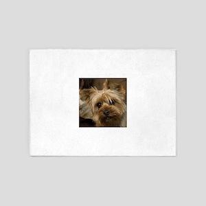 Yorkie Puppy 5'x7'Area Rug