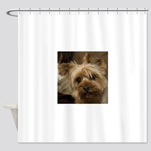Yorkie Puppy Shower Curtain