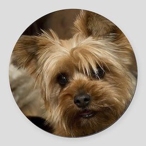 Yorkie Puppy Round Car Magnet