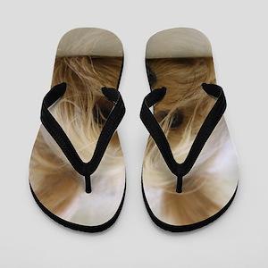Yorkie Dog Flip Flops