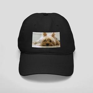 Yorkie Dog Black Cap