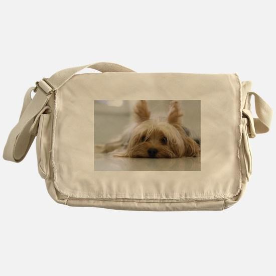 Yorkie Dog Messenger Bag