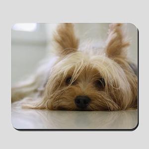 Yorkie Dog Mousepad