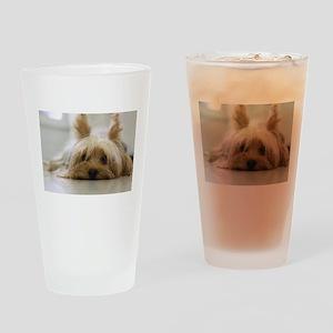 Yorkie Dog Drinking Glass