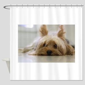 Yorkie Dog Shower Curtain