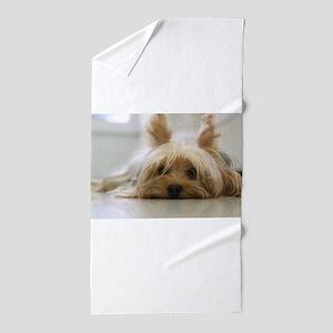 Yorkie Dog Beach Towel
