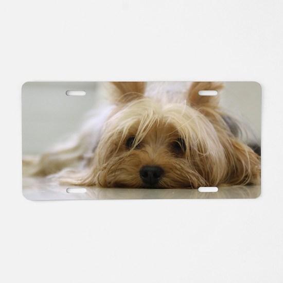 Yorkie Dog Aluminum License Plate