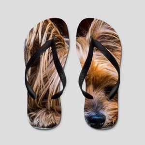 Yorkshire Terrier Dog Small Cute Pet Flip Flops