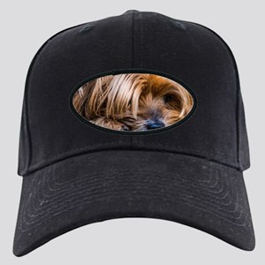 Yorkshire Terrier Dog Small Cute Pet Black Cap