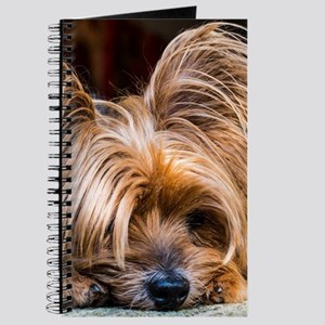 Yorkshire Terrier Dog Small Cute Pet Journal