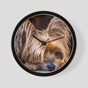 Yorkshire Terrier Dog Small Cute Pet Wall Clock