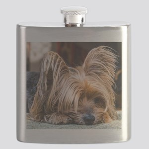 Yorkshire Terrier Dog Small Cute Pet Flask