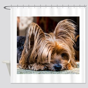 Yorkshire Terrier Dog Small Cute Pe Shower Curtain