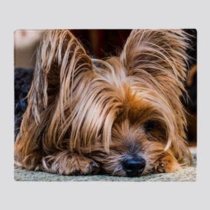 Yorkshire Terrier Dog Small Cute Pet Throw Blanket