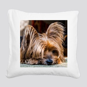 Yorkshire Terrier Dog Small C Square Canvas Pillow