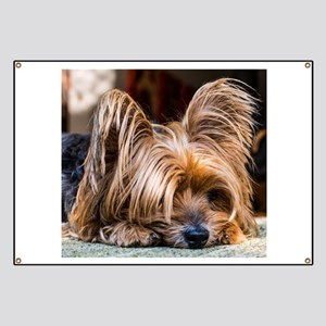 Yorkshire Terrier Dog Small Cute Pet Banner