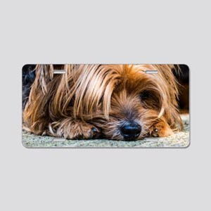 Yorkshire Terrier Dog Small Aluminum License Plate