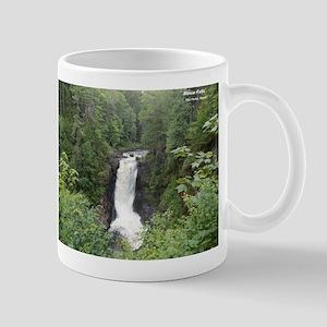 Moxie Falls 1 Mugs