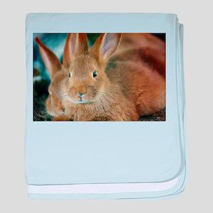 Animal Bunny Cute Ears Easter baby blanket