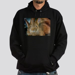Animal Bunny Cute Ears Easter Hoodie (dark)
