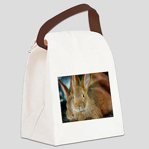Animal Bunny Cute Ears Easter Canvas Lunch Bag