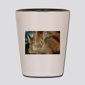 Animal Bunny Cute Ears Easter Shot Glass