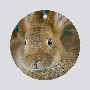 Animal Bunny Cute Ears Easter Round Ornament