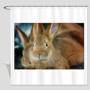 Animal Bunny Cute Ears Easter Shower Curtain