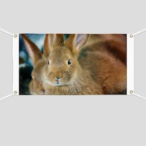 Animal Bunny Cute Ears Easter Banner