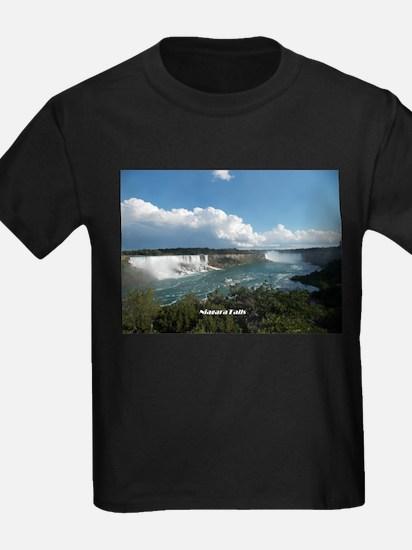 Niagara Falls1 T-Shirt