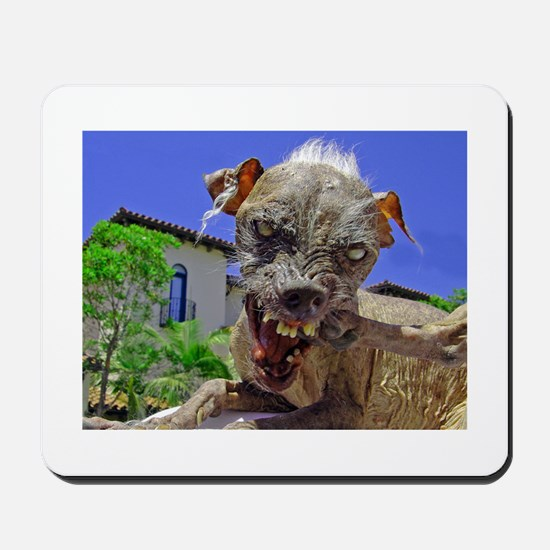 UGLIEST DOG! Mousepad
