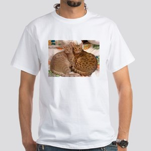 ocicat lavender and chocolate T-Shirt