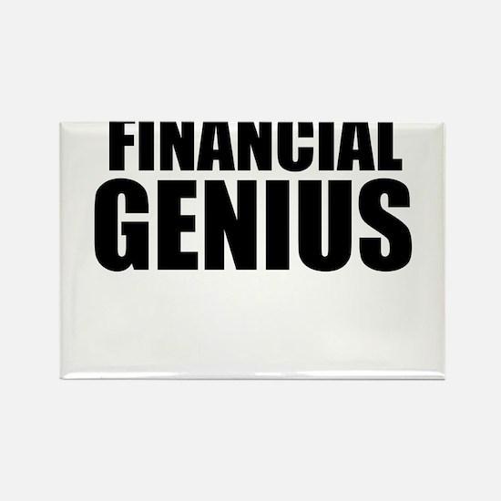 Financial Genius Magnets