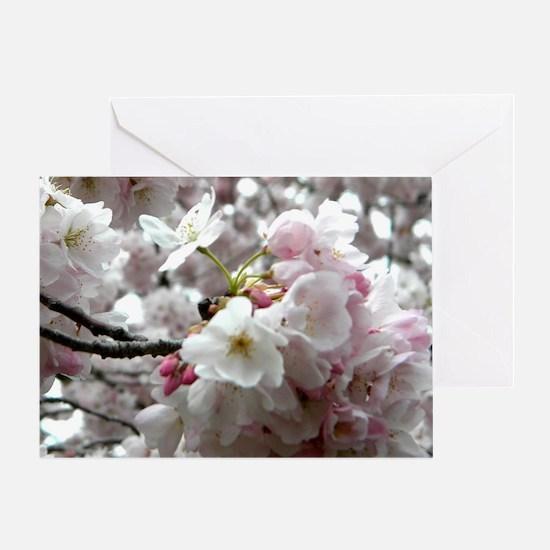 Unique Cherry blossom Greeting Card