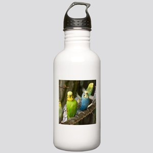 Budgie Stainless Water Bottle 1.0L