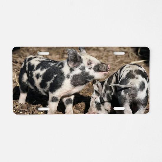 Cute Piggy Aluminum License Plate