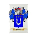Podolsy Rectangle Magnet (100 pack)