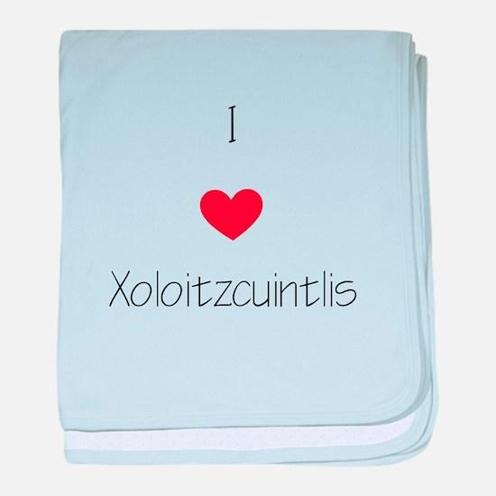 I love Xoloizcuintlis baby blanket