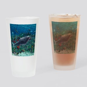 Dolphins play in the reef Drinking Glass